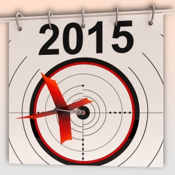 2015 Target Meaning Future Growth Goal Projection